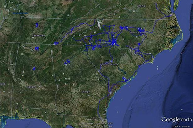 Dukenet map
