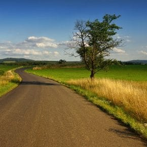 LTD Rural Image