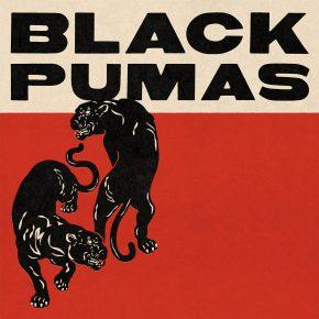 black pumas band