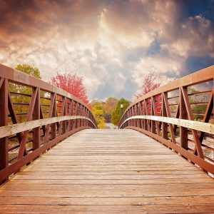 Bridge the digital divide gap.
