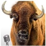 Frank the Buffalo, Frontier