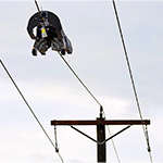 Image for Facebook Fiber Robot Would Enable Installation on Electric Infrastructure