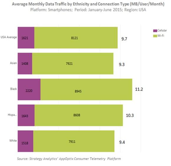 monthly wireless data usage