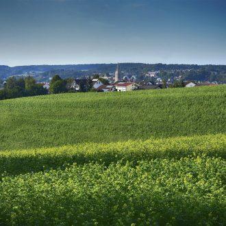 rural landscape image