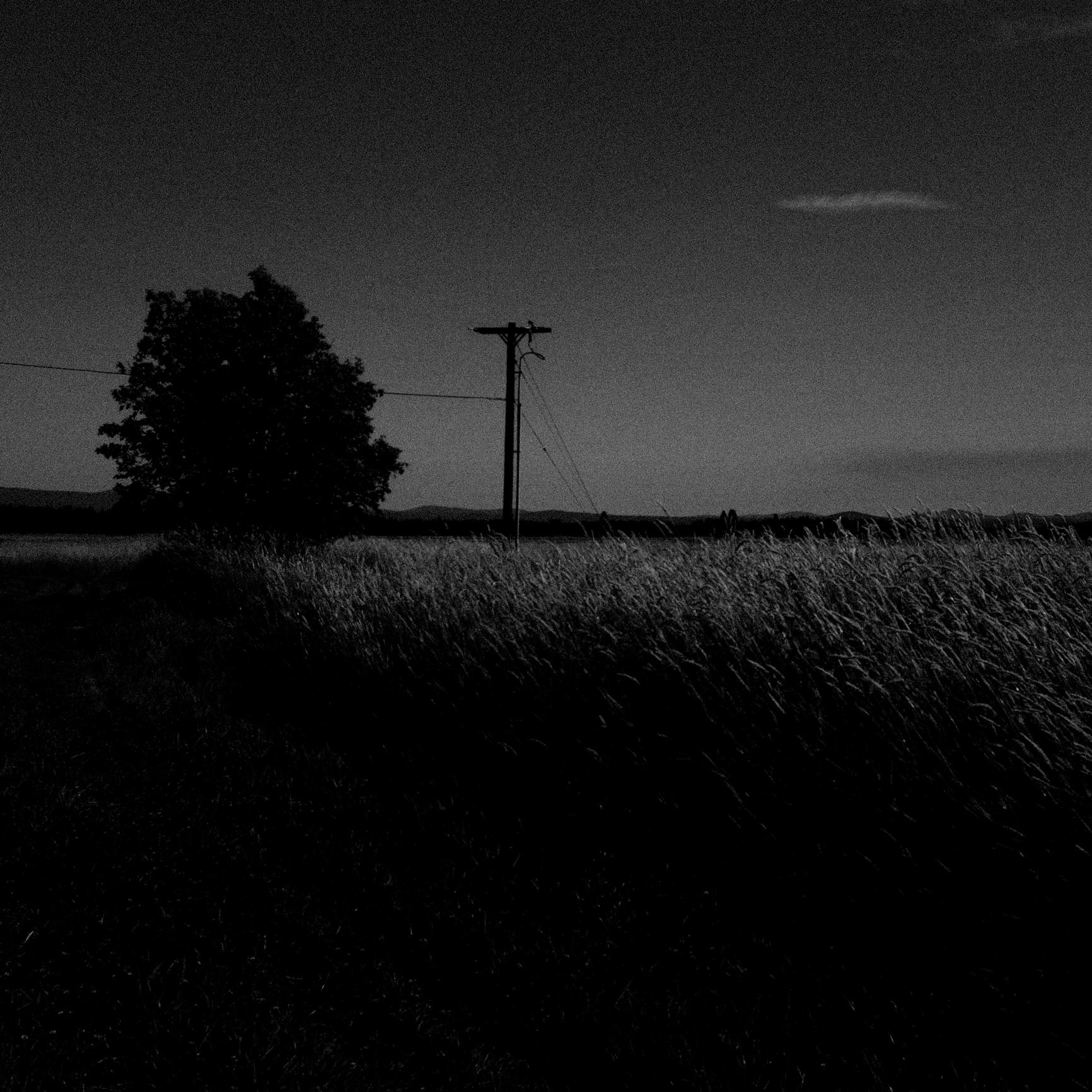 rural telephone pole