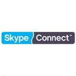 Image for Skype Turns its Attention to Small Business, Offers SMB IP Voice Option