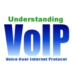 Image for Pew: 1/4 of US Adult Internet Population Using VoIP